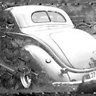 1937 by Lynne Haselden
