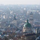 Lviv in fog by Oleksii Rybakov