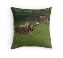 English Longhorns Throw Pillow