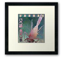 Dead Bug Framed Print