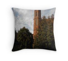 Smithsonian Castle Late Afternoon Throw Pillow