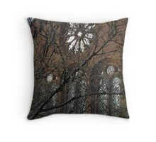 Smithsonian Castle Detail Throw Pillow