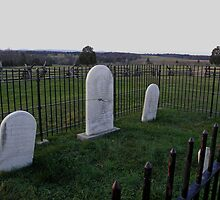 Henry Hill Graves by Robert Arconti