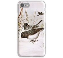 Buntings In The Snow iPhone Case/Skin