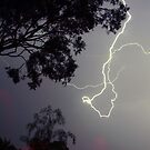 Wild Lightning by Clive