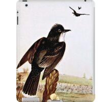 Kingbirds Vintage Illustration iPad Case/Skin