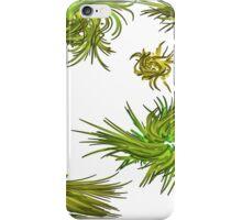 Green Fern iPhone Case/Skin
