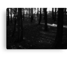 in the garden of my dreams there will be dark woods for dreaming in Canvas Print