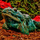 China frog by houprophoto