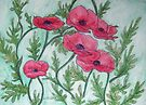 Red Poppies III by Alexandra Felgate