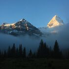 Morning After...Mt Assiniboine at Dawn by Dana Kingsbury