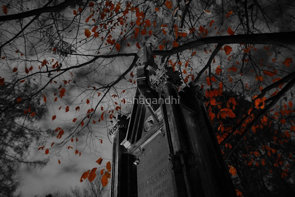 Red leaves by nishagandhi