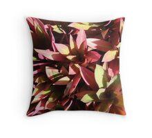 Purple Vibrance-(Floral Macro) Throw Pillow