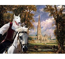Bull Terrier Art - Salisbury Cathedral Photographic Print