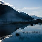 Alaska by Train 6 by Nate Forman