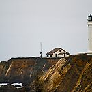 Point Arena Lighthouse by Bryan D. Spellman