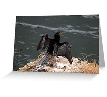 Spread your wings Greeting Card