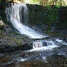 Horseshoe Falls by DanielTMiller