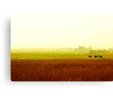 three is not a crowd Canvas Print
