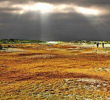 Autumn walk on the beach by Adri  Padmos