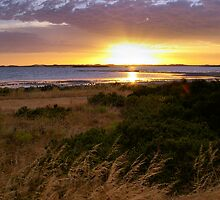 Coorong I by gypsygirl