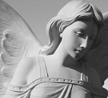 Marble Angel - Waverley Cemetery, Sydney Australia by Lise Kool