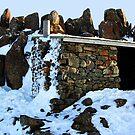 Shelter by Stephen Ruane