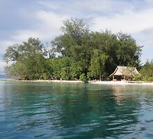 a desolate Solomon Islands landscape by beautifulscenes