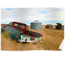 Grassy prairies Poster