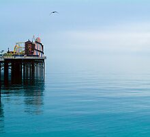 Palace Pier, Brighton and Hove. by Eyeswide