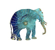 Elephant blue maps Photographic Print