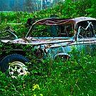 Melting Peugeot by Bryan D. Spellman