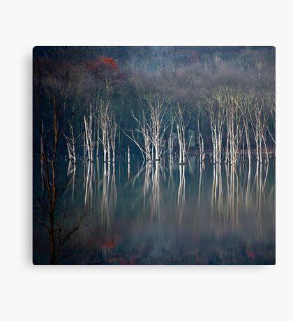 November Light Canvas Print
