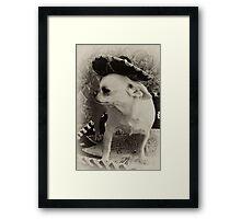 Ay, Chihuahua! Framed Print