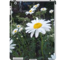 Daisies in a Vacant Lot iPad Case/Skin