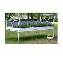 Flower bed Art Print