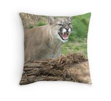 Mountain Lion, Puma, Cougar Throw Pillow