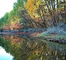 Color's of the Autumn by robertpatrick