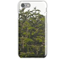 Nettles on a sunny day iPhone Case/Skin