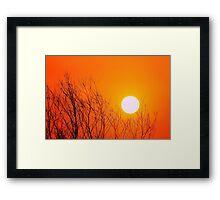 Gently brush Framed Print