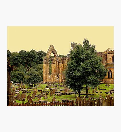 Bolton Abbey Photographic Print
