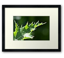 Thistle Scales Framed Print