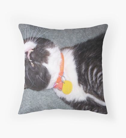I am Sleeping leave me alone!! Throw Pillow