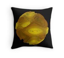 Abstract 104J by sdavis, artist Throw Pillow