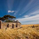 Old Homestead by Paul Thompson