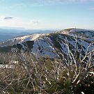 mt feathertop,panorama by dmaxwell