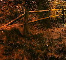 Old Fence by browncardinal8