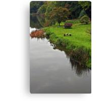 Boyne riverside  Canvas Print