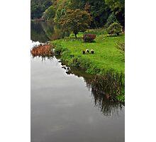 Boyne riverside  Photographic Print