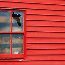 Broken Window by Kym Howard